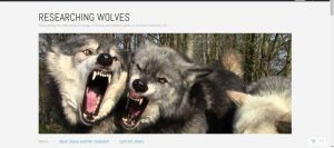 researching_wolves-screen_shot